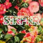 Starfucker Spins New Album Live on Web