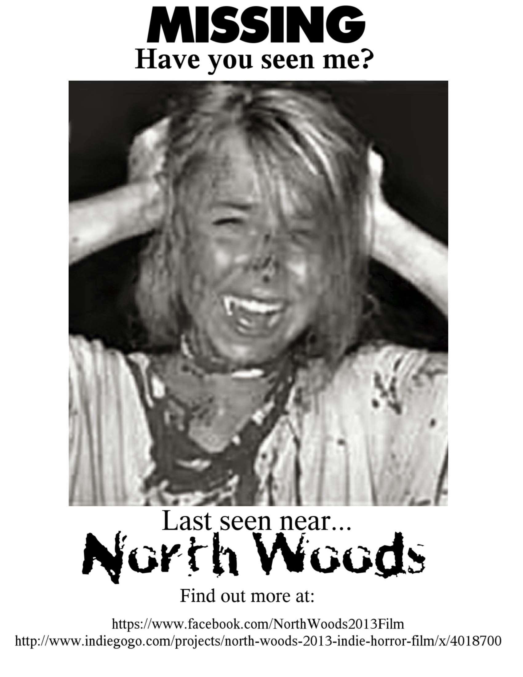 "Flyer for indie horror film ""North Woods"""